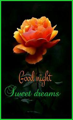 195 Best good night images in 2019   Good night, Good night