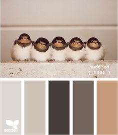 Color scheme: grey and beige. huddled hues by design seeds Colour Pallette, Color Palate, Colour Schemes, Color Combos, Design Seeds, Colorful Decor, Colorful Interiors, Interior Paint Colors, Grey And Beige