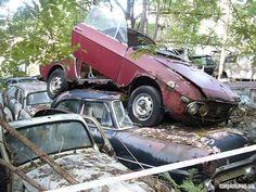 Abandoned Lancia Fulvia