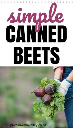 If you have a garden at home, chances are you can grow your own beets. If you are like many people, you might not like the taste of beet roots right from the garden, however you should try pickled beets. Canning Tips, Canning Recipes, How To Start Small Garden, Meat Rabbits, Canning Vegetables, Canning Pickles, Water Bath Canning, Canned Meat, Pickled Beets