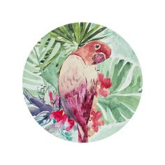 The VASAIO Side Plate, Parrot is part of freedom's range of contemporary furniture and homewares and is available to buy online or in stores across Australia. Tropical Dinnerware, Side Plates, Contemporary Furniture, Sale Items, Parrot, Fall Decor, Freedom, Backgrounds, Colours