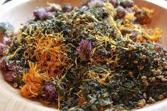 practical magic and herbs