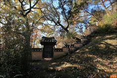 김천령의 바람흔적 :: 부용대 절벽에 꼭꼭 숨은 하회마을 '층길'을 걷다