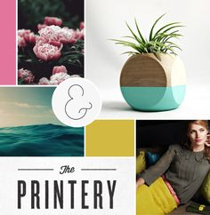 modern + nature moodboard / by breanna rose