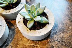 maceta tiesto para plantas DIY hecho con cemento en casa