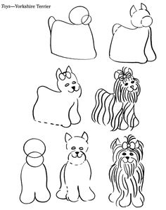 How to Draw a Yorkshire Terrier from Dover Books via inkspired musings: Puppy Love