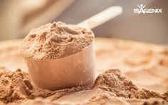 Take a deep dive into the science behind muscle recovery and learn about the benefits of taking protein before bed!