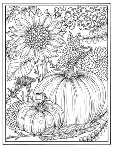 Fall flowers and pumpkins digital coloring page Thanksgiving.-Fall flowers and pumpkins digital coloring page Thanksgiving, mums, sunflower, autumn, digi stamp - Adult Coloring Pages, Pumpkin Coloring Pages, Coloring Pages For Grown Ups, Thanksgiving Coloring Pages, Fall Coloring Pages, Mandala Coloring Pages, Printable Coloring Pages, Coloring Books, Sunflower Coloring Pages