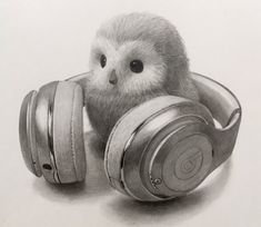 dessinLABO(@dessin_labo)さん | Twitter Beautiful Pencil Drawings, 3d Pencil Drawings, Graphite Drawings, Animal Drawings, Still Life Sketch, Still Life Drawing, Emotional Drawings, Realistic Sketch, Object Drawing