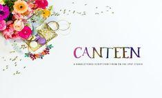 The Big Font Bundle (Canteen Font) by TheHungryJPEG | TheHungryJPEG.com