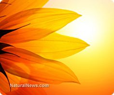 Five ways to get more vitamin D through natural sources