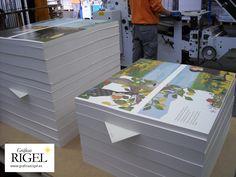 """PLIEGOS - Proceso de impresión del álbum infantil ilustrado """"El constipado del Sol"""" de Esperanza Medina y Elena Fernández en Graficas Rigel- Avilés, Asturias."""