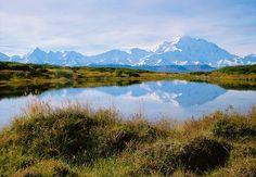 Mount McKinley Pond Reflections Denali National Park Alaska
