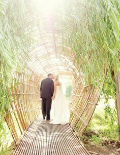 Botanical Gardens Of The Ozarks Wedding   Fayetteville, AR