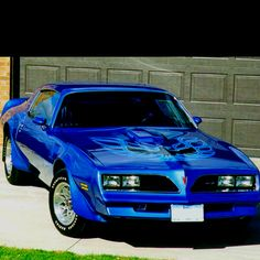 1978 Firebird Trans Am. My first car and I miss it so much!