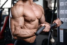 The key when training your arms in the gym is to keep it slow, not too heavy, and to always focus on the contraction with each rep. Arm Day Workout, Bicep And Tricep Workout, Good Arm Workouts, Gym Workout Videos, Biceps And Triceps, Lower Ab Workouts, Chest Workouts, Forearm Workout, Workout Routines