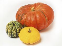 What's a fall garden without  pumpkins ? Sow in mid summer for an autumn harvest.