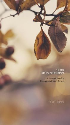 Citaten Scribbr Korea : 13 best korean song lyrics images in 2018 lyric quotes languages