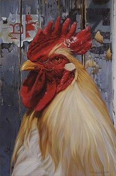 Born in Cincinnati, Ohio, Allison earned a BFA at The Columbus College of Art and Design where she focused on illustration and art hi. Chickens And Roosters, Pet Chickens, Chickens Backyard, Rooster Painting, Rooster Art, Chicken Painting, Chicken Art, Gallus Gallus Domesticus, Chicken Pictures