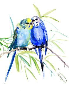 Watercolor Portrait Painting, Easy Watercolor, Love Wall Art, Color Pencil Art, Bird Drawings, Budgies, Parakeet, Bird Art, Pet Birds