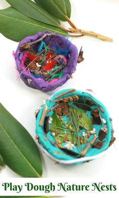 Play dough and nature birds nests. arts and crafts for kids. Playdough is for the Birds! - How Wee Learn