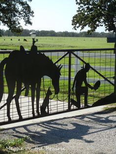 What a beautiful gate!