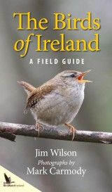 Buy Birds of Ireland: A Field Guide by Jim Wilson, Mark Carmody and Read this Book on Kobo's Free Apps. Discover Kobo's Vast Collection of Ebooks and Audiobooks Today - Over 4 Million Titles! Jim Wilson, Good Books, Books To Read, Shark Facts, Sharks For Kids, Leagues Under The Sea, Facts For Kids, Field Guide, Show Photos
