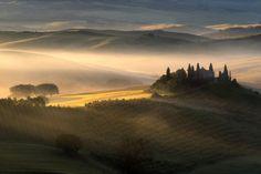 Foggy sunrise - null