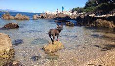 Locals secret guide to best beaches in Antibes | SeeAntibes.com
