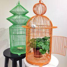 Superfina dekorationsburar för ett ljus eller en blomma. Grön eller orange ø33cm, H:62cm 1.165kr/st. #roombutiken #nyhetpåroom