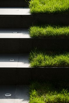 Via Botani landscape design by Open Box
