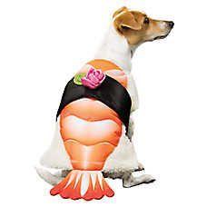 PetSmart Sushi Pet Costume