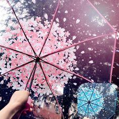 🌸Sakura Umbrella🌸 What color for you? Fancy Umbrella, Transparent Umbrella, Bubble Umbrella, Clear Umbrella, Love Rain, Rain Photography, Sakura, Avatar Couple, Pink Aesthetic
