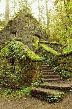 Portland Oregon lorievdz