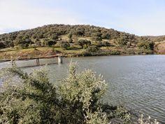 Serra de Monfurado - PORTUGAL - Pesquisa Google