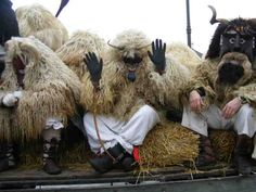 Busó festivities at Mohács: masked end-of-winter carnival custom (Intangible Heritage Lists)