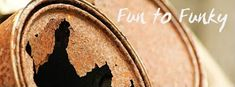 Fun to Funky: Mammoth Sunflowers + My Tips! Mammoth Sunflower, Thunderstorms, Sunflowers, Fur Babies, Garden, Water, Tips, Fun, Lightning Storms