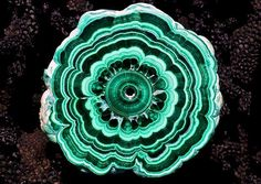 FB Amazing Geologist · Beautiful Malachite Stalactite from Katanga Province, D. Crystals Minerals, Rocks And Minerals, Post Rock, Art Pieces, Gemstones, Congo, Beautiful, Type 3, Amazing
