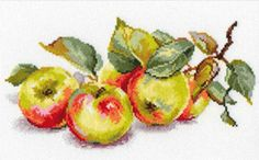 """A BRAND NEW COUNTED CROSS STITCH KIT """"APPLES"""" ALISA #ALISA"""