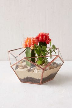 ABJ Glassworks Calix Large Planter - Urban Outfitters
