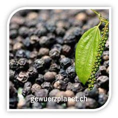Tellicherry Pfeffer | Gewürzplanet.ch | Ihr Online Shop und Forum für Gewürze, Tee und Delikatessen, 50gr. 3.95