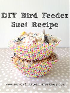 DIY Bird Feeder Suet Recipe - EASY 2 ingredient recipe that even your kids can create in the kitchen and store bird treats all summer long! Stash them in your garden for some feathery friends!