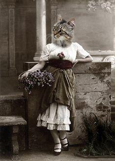 Karen Vintage 5x7 Cat Print Anthropomorphic by AnimalFancy