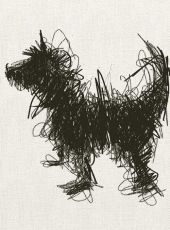 a dog a day- sally muir