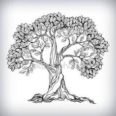 Vecteurs similaires à 126725478 Tree Hand drawn