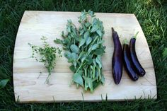 Late June Harvest: thyme, purslane and eggplant