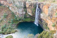 forest - Google Search Family Travel, Places To See, South Africa, Waterfall, Journey, Outdoor, Beautiful, Google Search, Family Trips