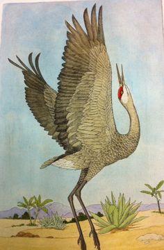 Sandhill Crane I – The John Furches Gallery