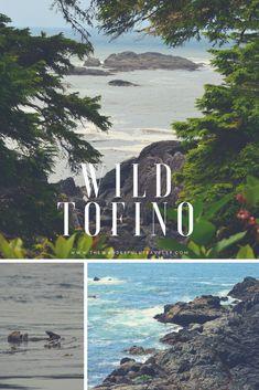 Wild Tofino: Beaches, Wildlife & Hiking - The Wanderfull Traveler Camping Europe, Camping World, Europe Beaches, California Beach Camping, Southern California, Vancouver Island, Canada Travel, Travel Inspiration, Travel Ideas