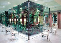 Growing greener- Hair salon Japan